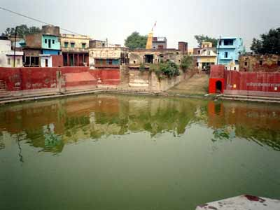 An Instruction on the banks of Radha Kunda
